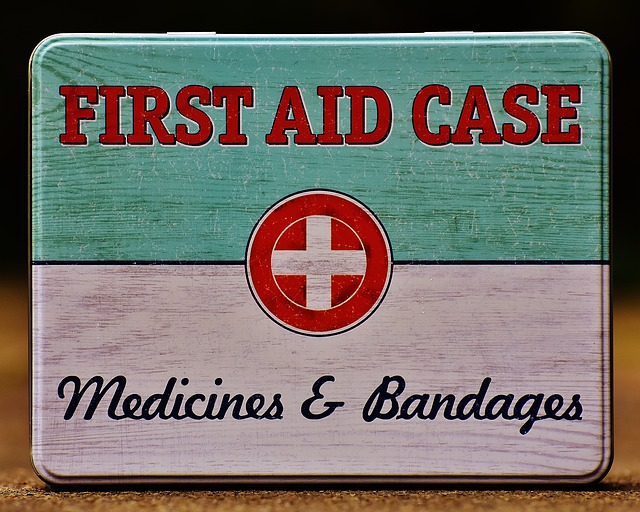 first-aid kits for dogs